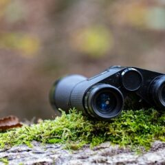 Binoculars Moss Forest Fall Ride  - Pat_Scrap / Pixabay