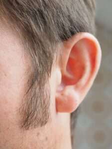 Sideburns Ear Hair Person Human  - Hans / Pixabay